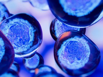 Update on Stem Cell Therapies